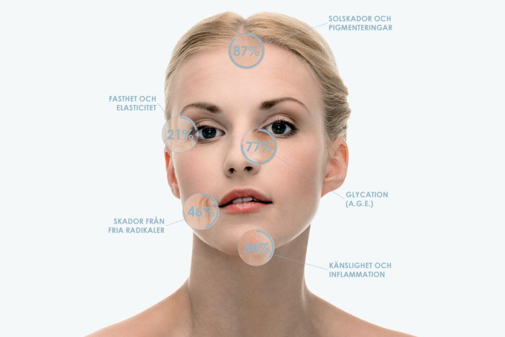 hudens åldrande